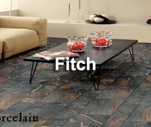 Fitch Cloud