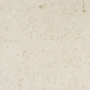 Jerusalem-Bone-Limestone